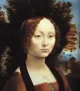 Leonardo  Da Vinci Portrait of Ginerva de'Benci-u oil painting picture wholesale