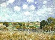 Alfred Sisley Meadow oil painting picture wholesale