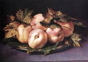 FIGINO, Giovanni Ambrogio Still-life with Peaches and Fig-leaves fdg oil painting artist