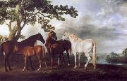 George Stubbs Mares and Foals in a Landscape oil painting picture wholesale