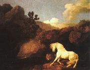 George Stubbs A Horse Frightened by a Lion oil painting picture wholesale