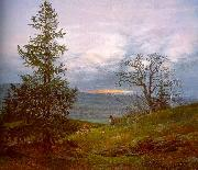 Johan Christian Dahl Evening Landscape with Shepherd oil painting picture wholesale