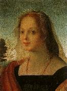 Rosso Fiorentino Portrait of a Young Woman oil painting artist