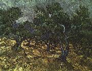 Vincent Van Gogh The Olive Grove oil painting picture wholesale