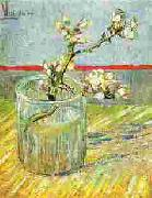 Vincent Van Gogh Blooming Almond Stem in a Glass oil painting picture wholesale