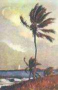 Winslow Homer Palm Tree, Nassau oil painting artist