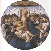 Sandro Botticelli Madonna and child with eight Angels or Raczinskj Tondo oil painting picture wholesale