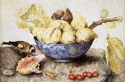 Giovanna Garzoni Chinese Cup with Figs,Cherries and Goldfinch oil painting artist