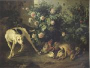 Francois Desportes Dog Guarding Game Near a Rosebush (mk05) oil painting artist