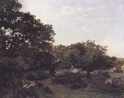 Frederic Bazille Forest of Fontainebleau (mk06) oil painting picture wholesale