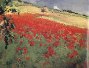 William blair bruce Landscape with Poppies (nn02) oil painting picture wholesale