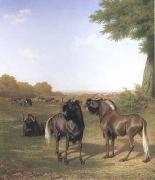 Jacques-Laurent Agasse White-Tailed Gnus (mk25) oil painting picture wholesale