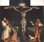 Matthias  Grunewald The Crucifixion (nn03) oil painting artist