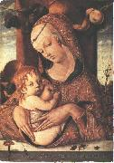 CRIVELLI, Carlo Virgin and Child dfg oil painting