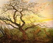 Caspar David Friedrich The Tree of Crows oil painting