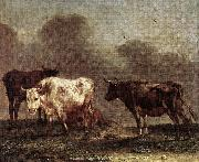 POTTER, Paulus Cows in a Meadow af oil painting