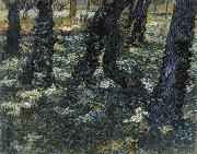 Vincent Van Gogh Undergrowth oil painting reproduction