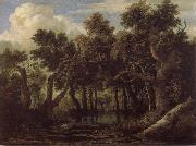 Jacob van Ruisdael Marsh in a Forest oil painting reproduction