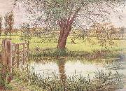 William Bell Scott Landscape with a Gate and Watermeadow (mk46) oil painting reproduction