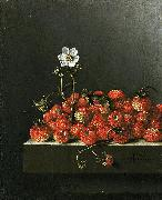 Adriaen Coorte Still life with wild strawberries. oil painting