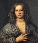 Girolamo Forabosco Portrait of a Woman oil painting