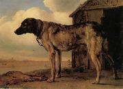POTTER, Paulus Watchdog oil painting reproduction