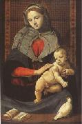 Piero di Cosimo The Virgin and Child with a Dove (mk05) oil painting