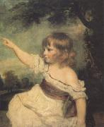 Sir Joshua Reynolds Master Hard (mk05) oil painting