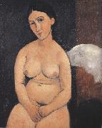 Amedeo Modigliani Seated Nude (mk39) oil painting reproduction