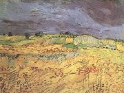 Vincent Van Gogh The Fields (nn04) oil painting reproduction