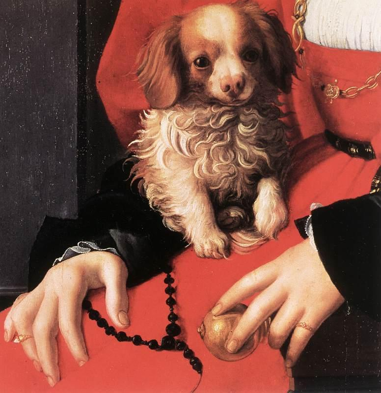 BRONZINO, Agnolo Portrait of a Lady with a Puppy (detail) fg oil painting image