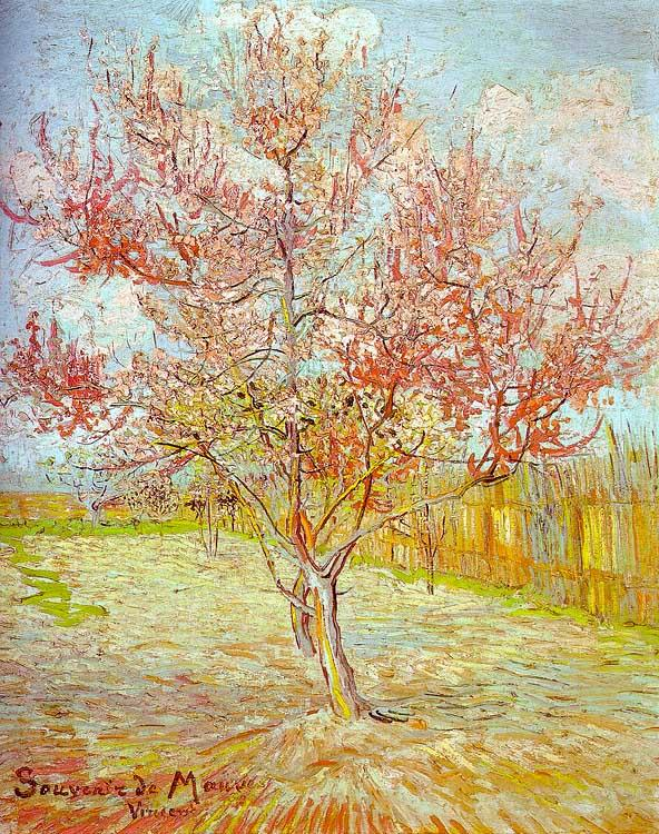 Vincent Van Gogh Peach Tree in Bloom oil painting image