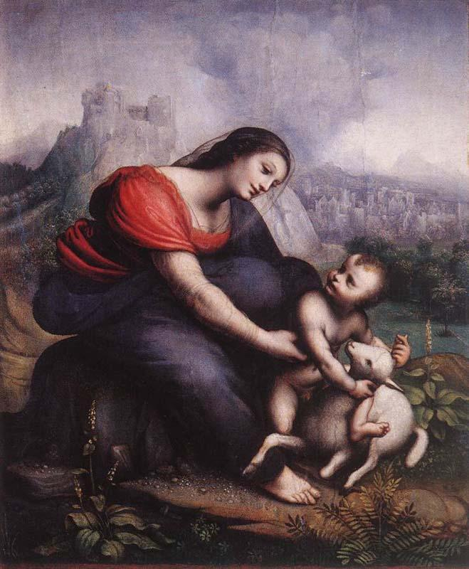 Cesare da Sesto Madonna and Child with the Lamb of God