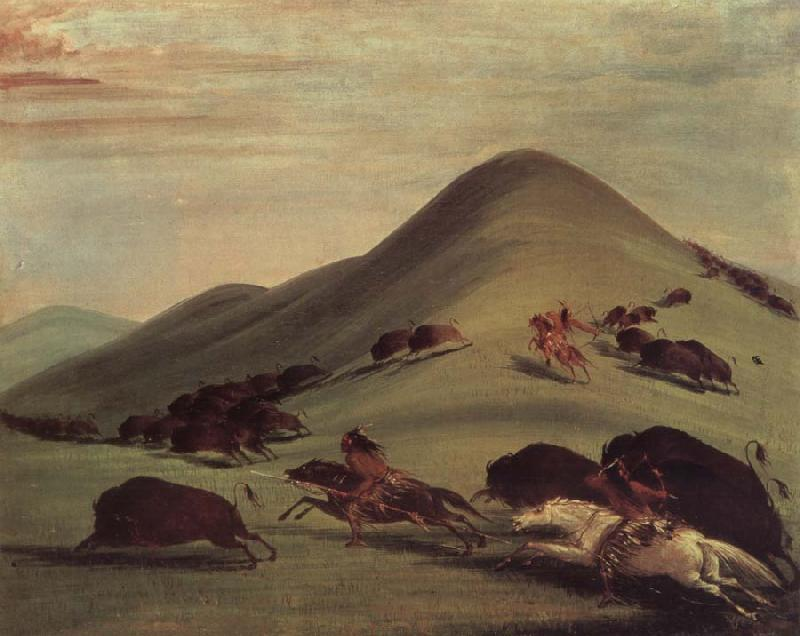 George Catlin Buffalo Chase Over Prairie bark