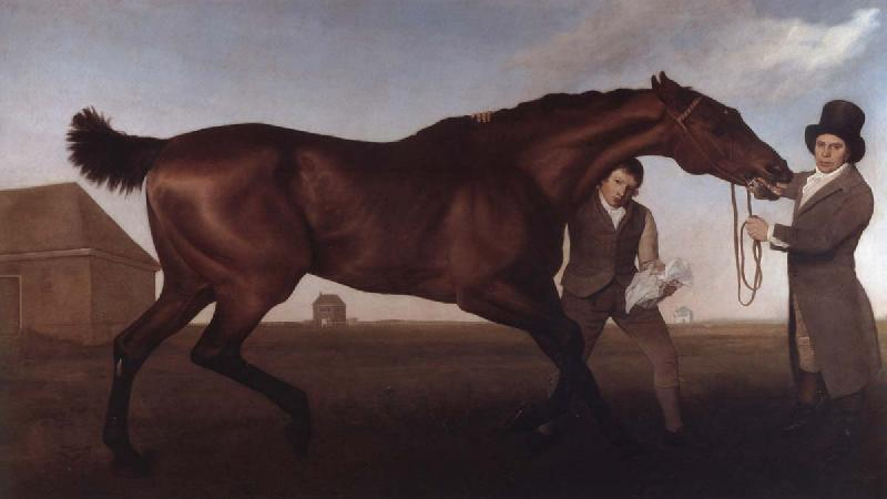George Stubbs Hambletonian, Rubbing Down