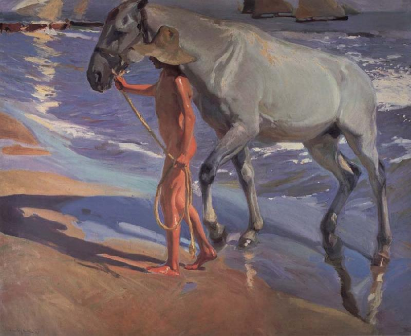 Joaquin Sorolla Y Bastida The bathing of the horse