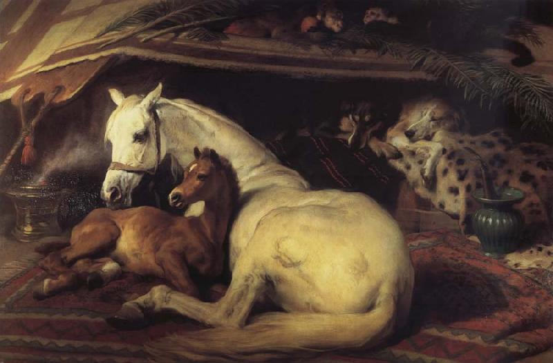 Sir Edwin Landseer The Arab Tent