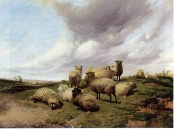 unknow artist Sheep 146