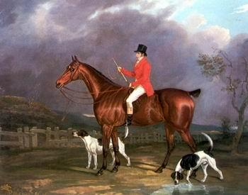 unknow artist Classical hunting fox, Equestrian and Beautiful Horses, 248. oil painting image