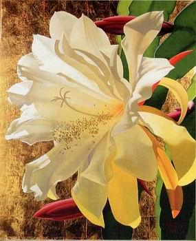 unknow artist Still life floral, all kinds of reality flowers oil painting  58