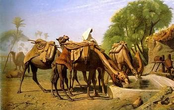 unknow artist Arab or Arabic people and life. Orientalism oil paintings  468