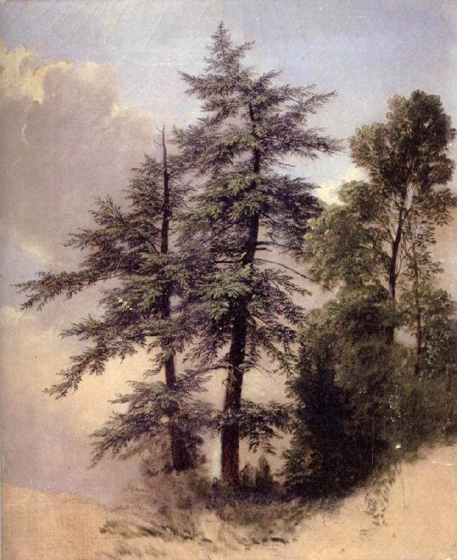 Asher Brown Durand Study from Nature Trees,Newburgh,