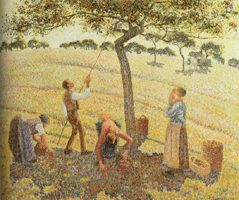 Camille Pissarro Pick  Apples