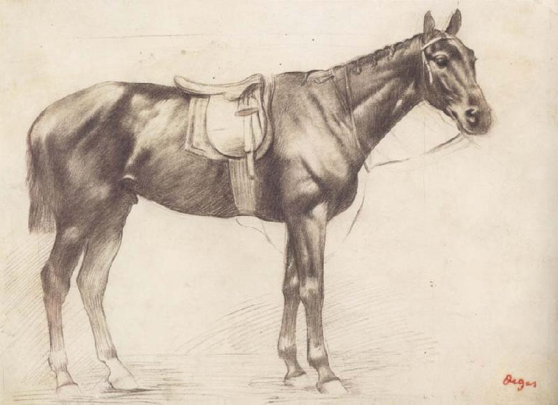 Edgar Degas Horse with Saddle and Bridle