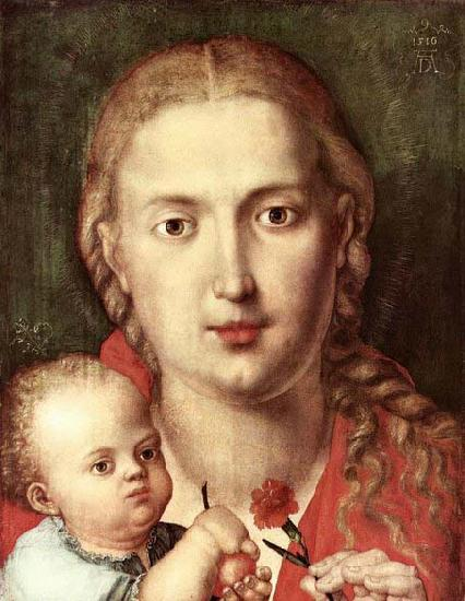 Albrecht Durer The Madonna of the Carnation