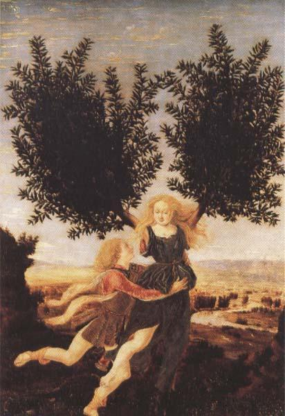 Antonio del Pollaiuolo Apollo and Daphne (mk45)