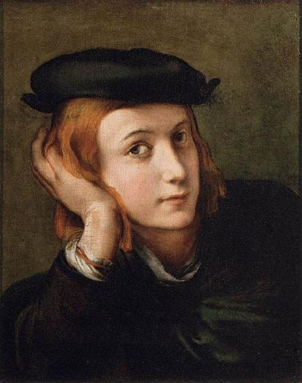 PARMIGIANINO Portrait of a Youth oil painting image