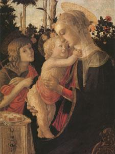 Sandro Botticelli The Virgin and child with John the Baptist (mk05) oil painting image